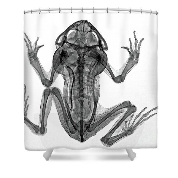 C035/4915 Shower Curtain