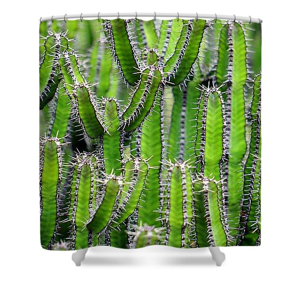 Cacti Wall Shower Curtain