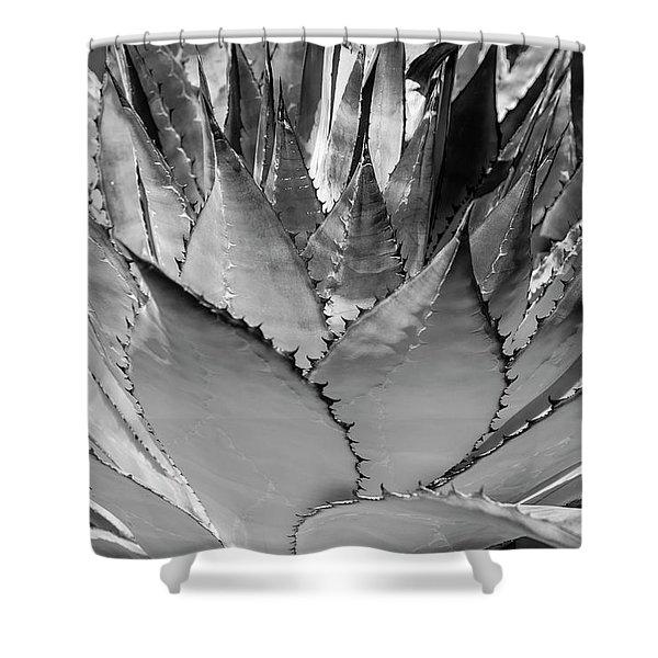 Cactus 3 Shower Curtain