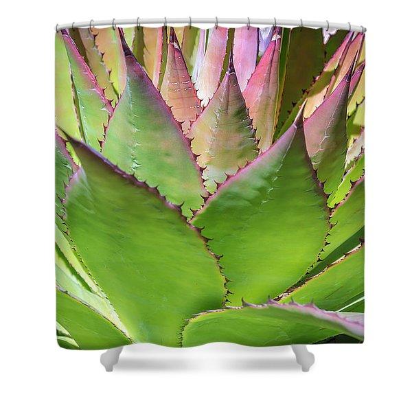 Cactus 4 Shower Curtain