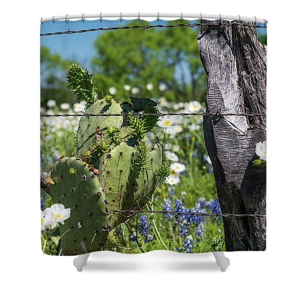 Cactus And Wildflowers Shower Curtain