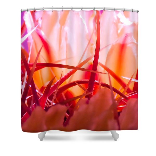 Cactus Cathedral Shower Curtain