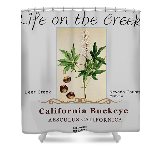 California Buckeye Shower Curtain