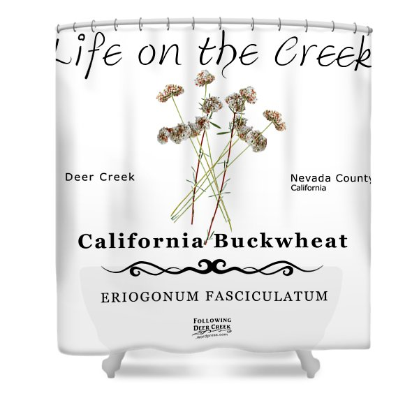 California Buckwheat Shower Curtain
