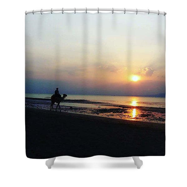 Camel Walking Along The Shoreline At Sunset In Egypt Shower Curtain