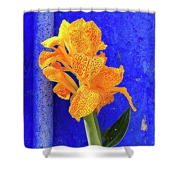 Canna Azure Shower Curtain