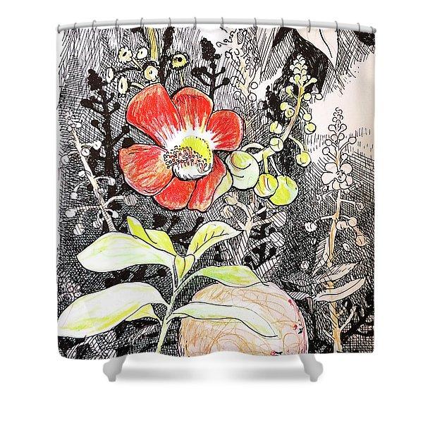 Cannonball Flower Botanical Shower Curtain