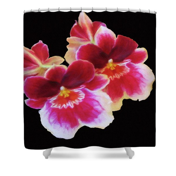 Canvas Violets Shower Curtain