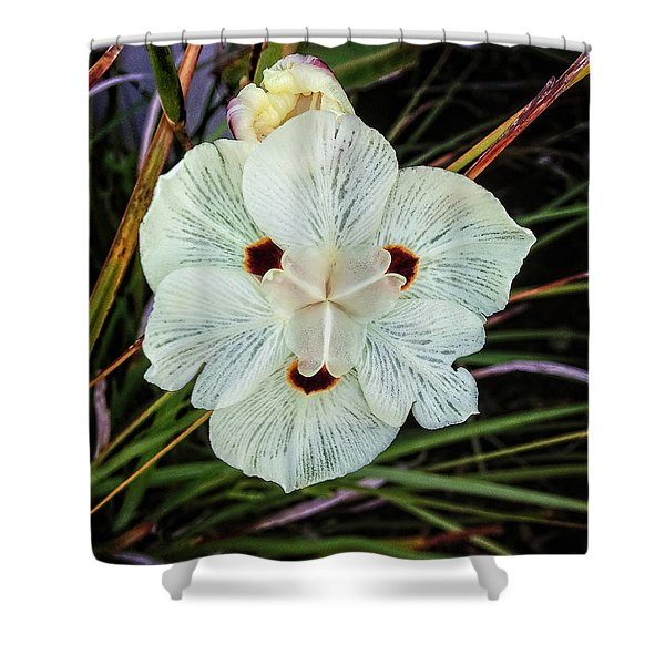 Caribbean Wildflower Shower Curtain