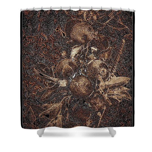 Carved Apples Shower Curtain
