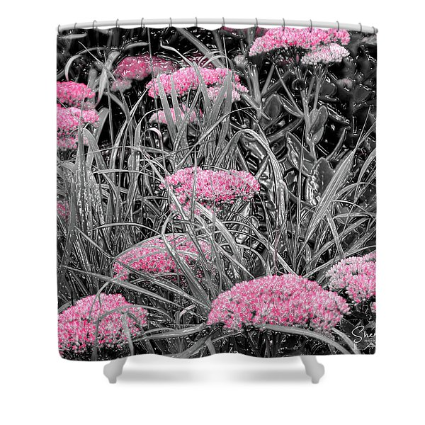 Carved Pink Butterfly Bush Shower Curtain