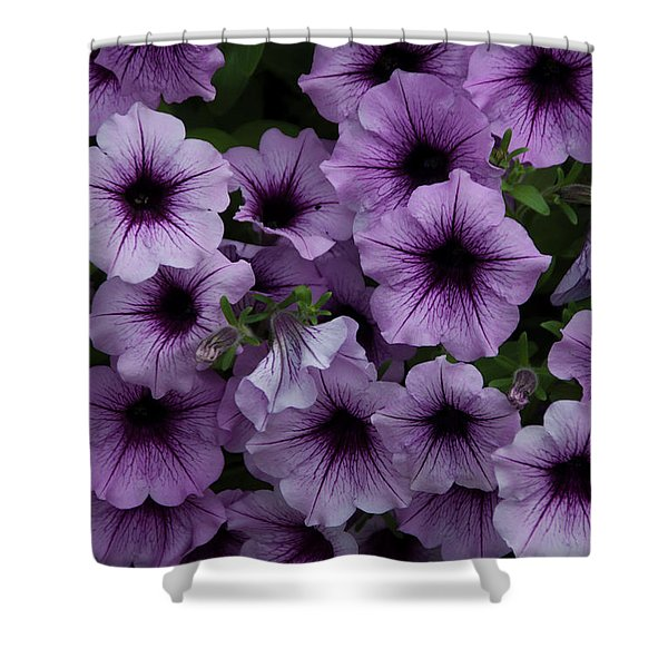 Cascade In Violet Shower Curtain