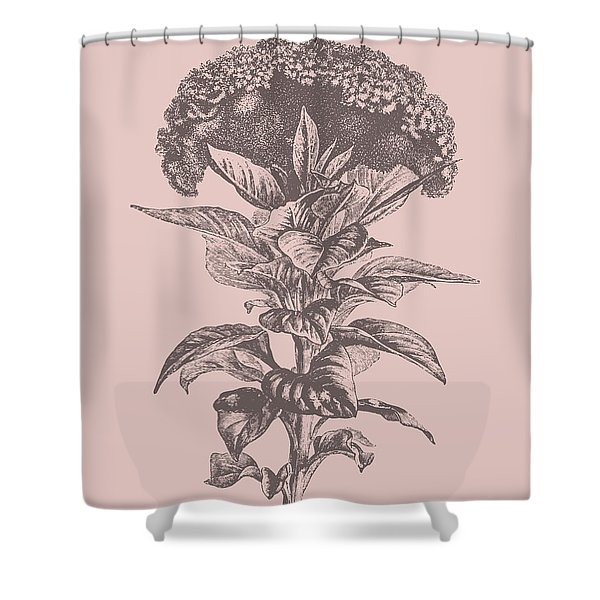 Celosia Blush Pink Flower Shower Curtain