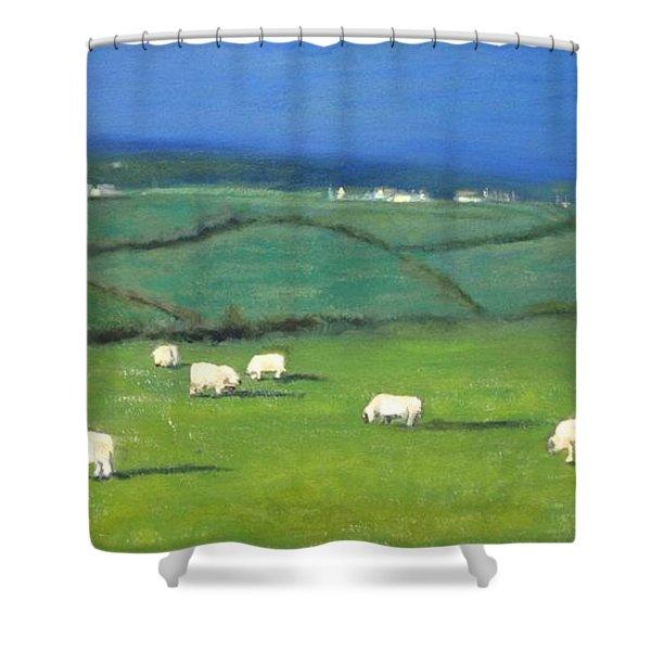 Celtic Sheep Shower Curtain