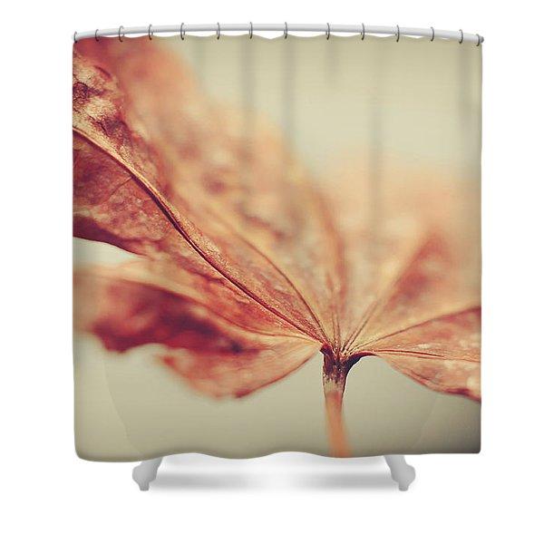 Central Focus Shower Curtain