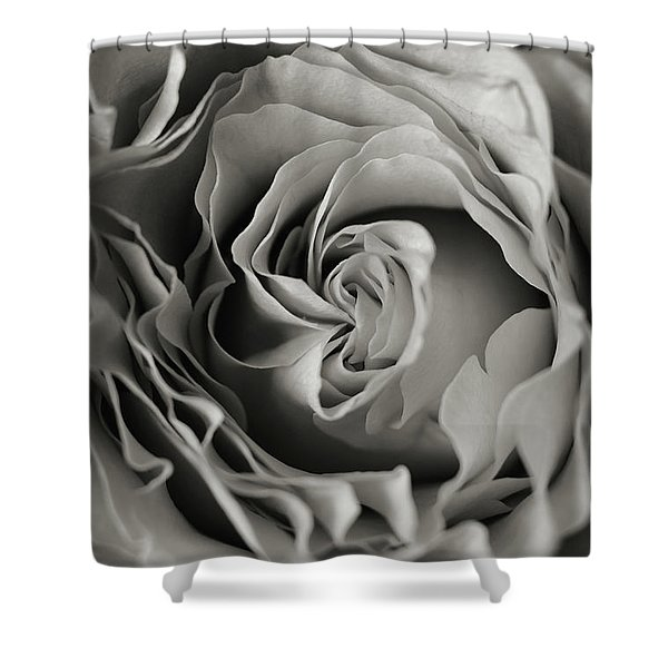Central Shower Curtain