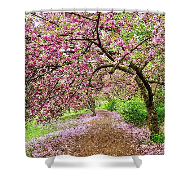 Central Park Cherry Blossoms Shower Curtain