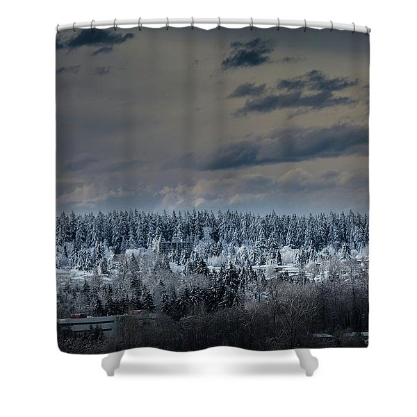 Central Park Winter Shower Curtain