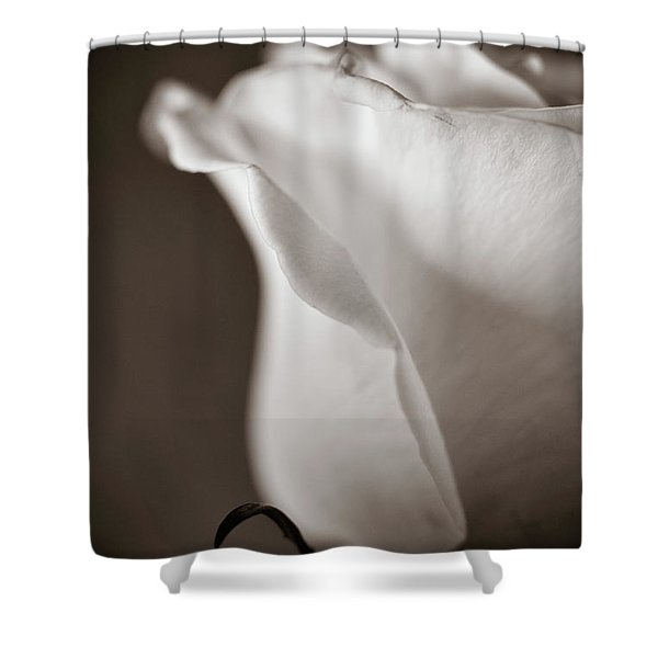 Chance Shower Curtain