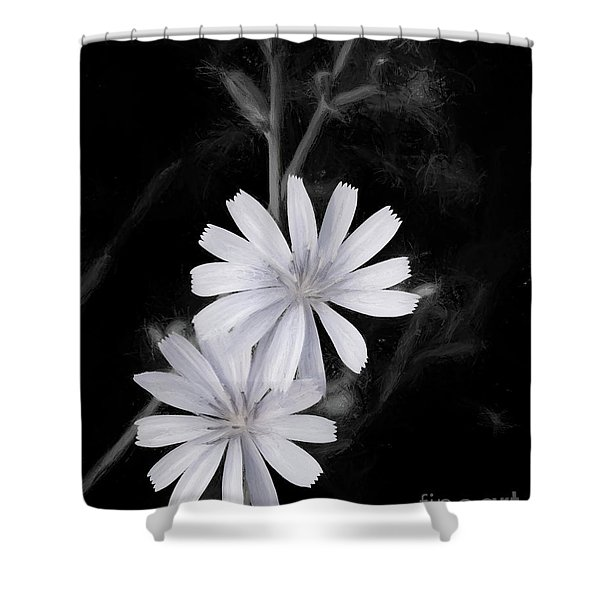 Charcoal Chicory Shower Curtain