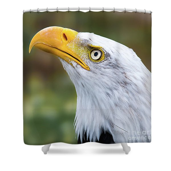 Check It Out Shower Curtain