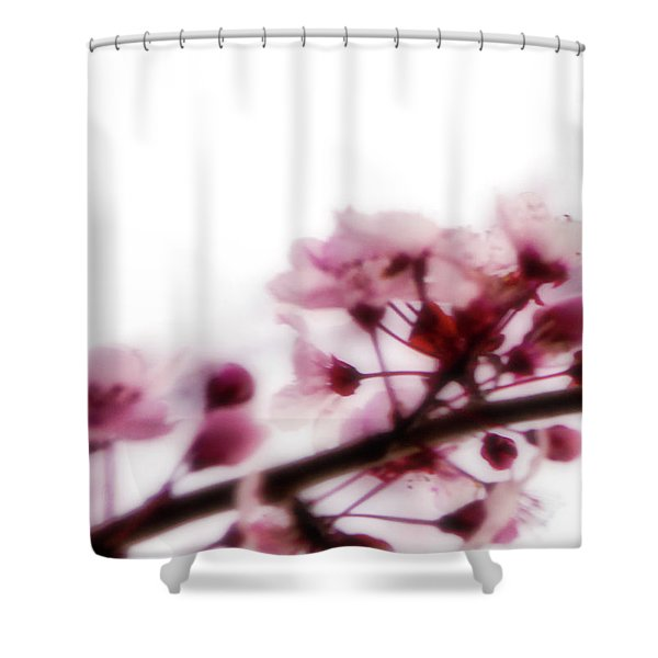 Cherry Triptych Left Panel Shower Curtain