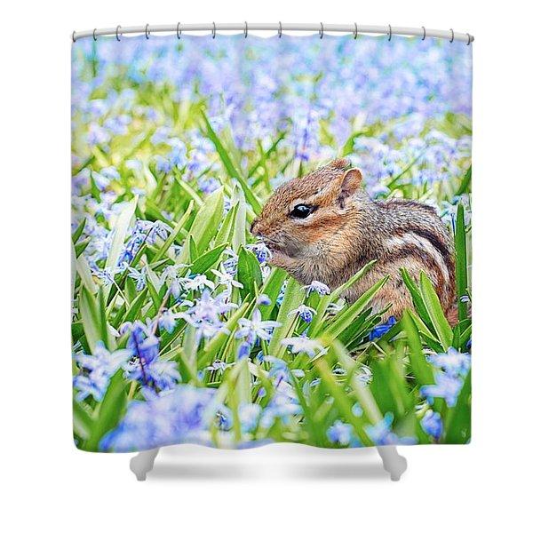 Chipmunk On Flowers Shower Curtain
