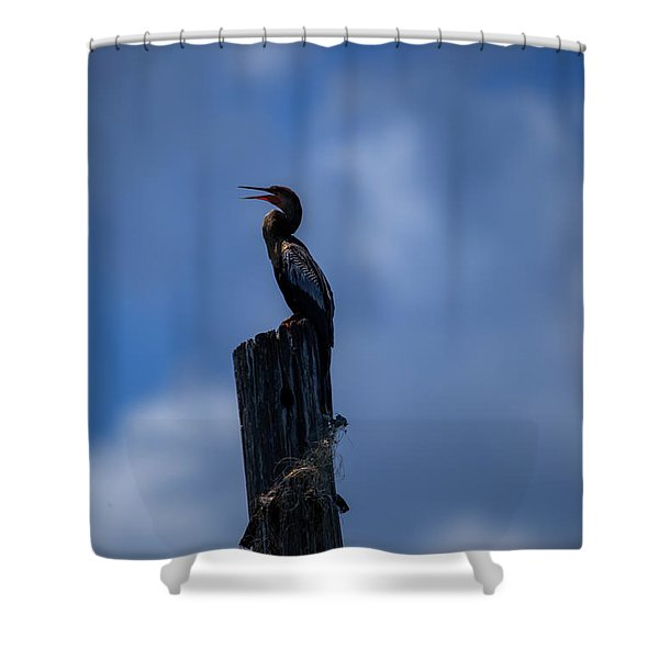 Cinematic Looking Anhinga Shower Curtain