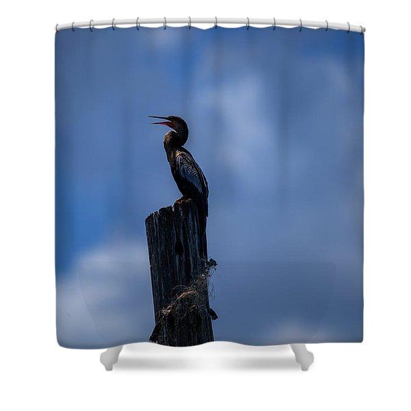 Cinematic Looking Anhinga Shower Curtain