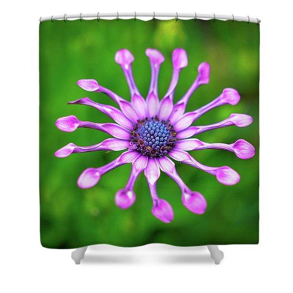 Circular Shower Curtain