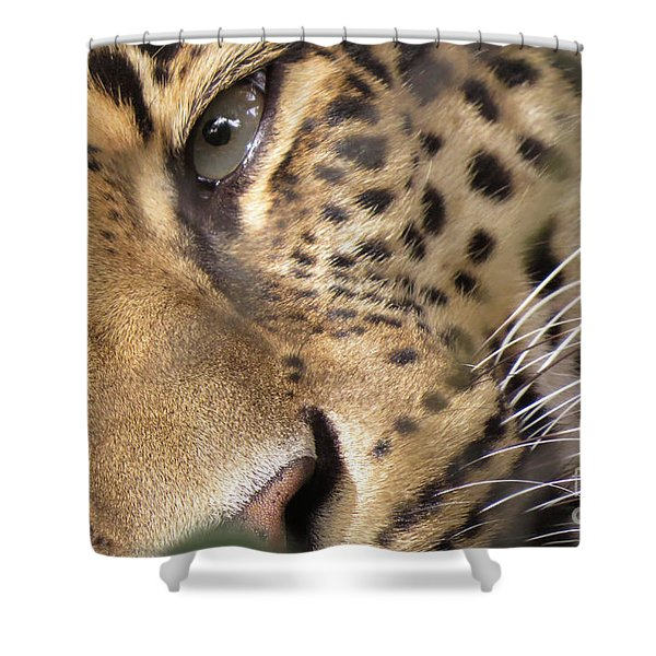 Close-up Shower Curtain