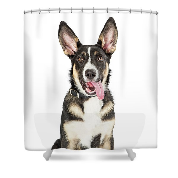 Closeup Cute Puppy Tongue Hanging Out Shower Curtain