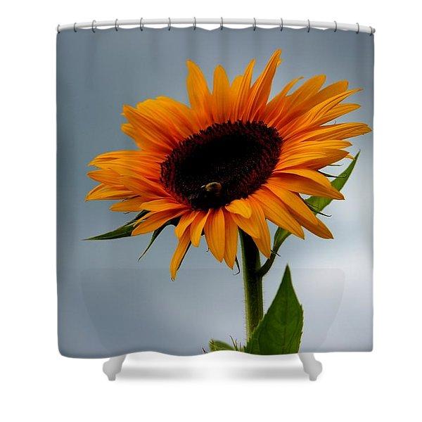 Cloudy Sunflower Shower Curtain