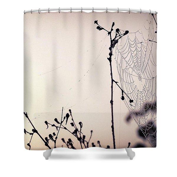 Cob Webbed Shower Curtain
