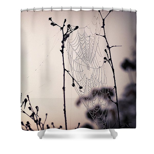 Cob Webbed Shower Curtain