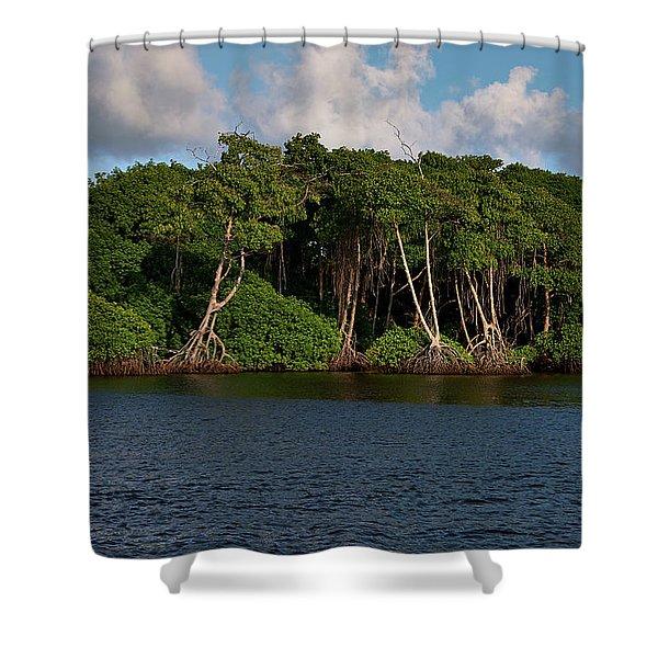 Cocal, Manzanilla Shower Curtain