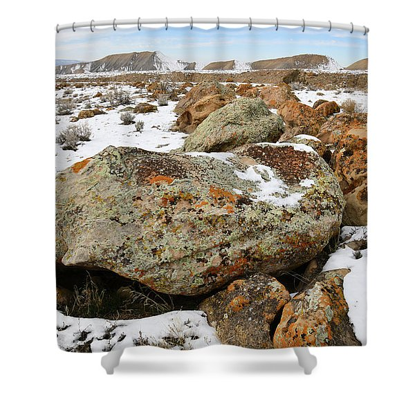 Color In The Book Cliff Desert Shower Curtain