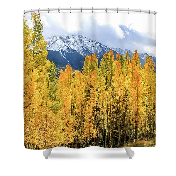 Colorado Aspens And Mountains 1 Shower Curtain