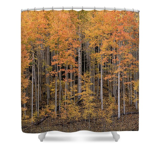 Colorado Guardians Shower Curtain