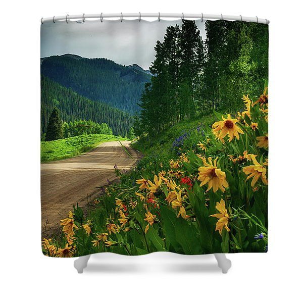 Shower Curtain featuring the photograph Colorado Wildflowers by John De Bord