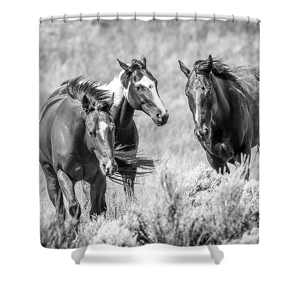 Colorado's Finest  Shower Curtain
