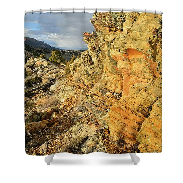Colorful Entrance To Colorado National Monument Shower Curtain