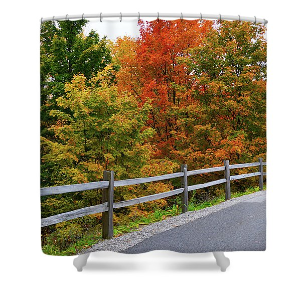 Colorful Lane Shower Curtain