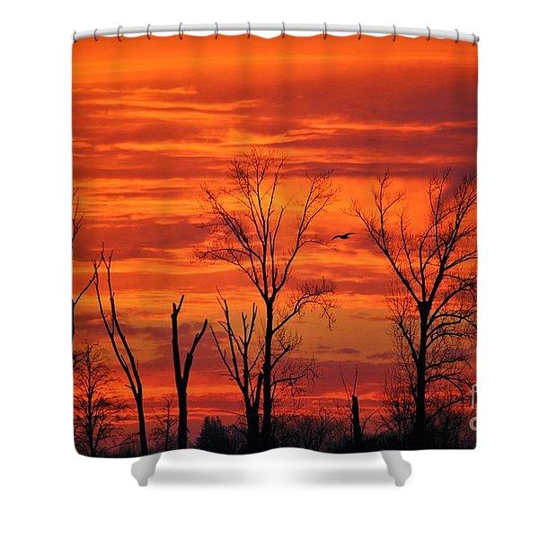 Colorful Sunrise Trees Shower Curtain