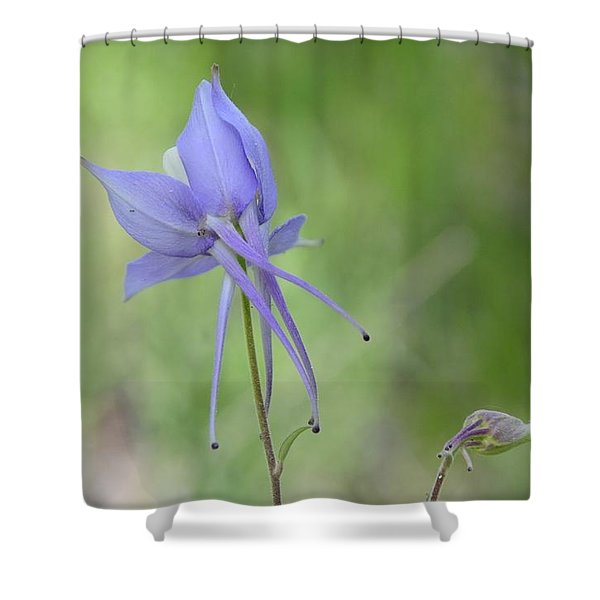 Columbine Details Shower Curtain