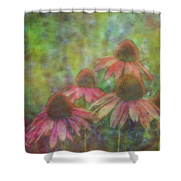 Coneflowers Among The Lavender 1667 Idp_2 Shower Curtain
