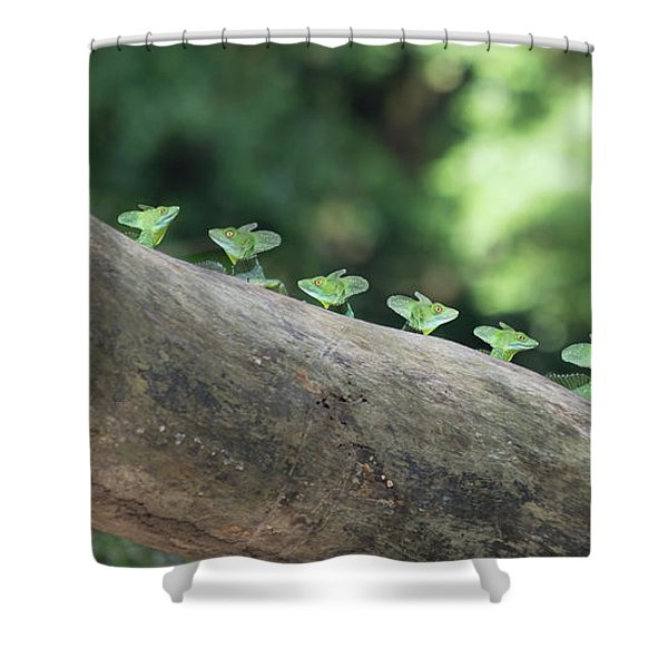Costa Rica Scout Troop 007  Shower Curtain