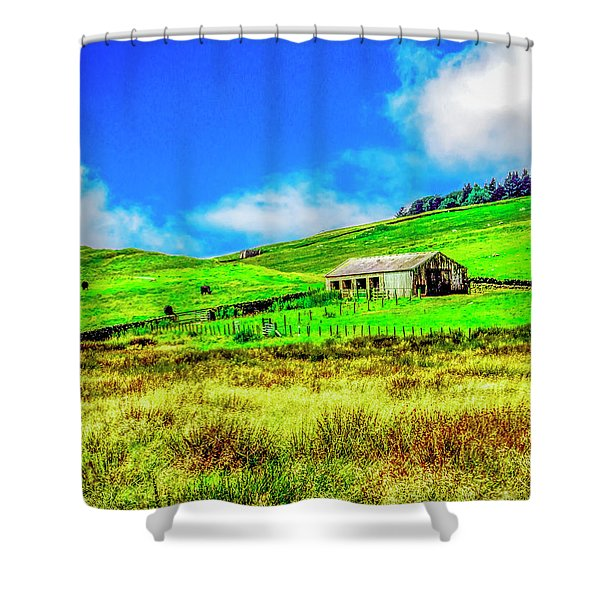 Cows Grazing Shower Curtain