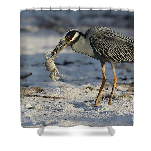 Crab For Breakfast Shower Curtain