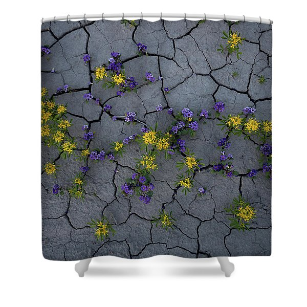 Cracked Blossoms Shower Curtain